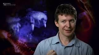 Смертельно опасные — Австралия Документальные фильмы Discovery HD