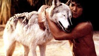 Семейный фильм «Книга джунглей / Маугли» (1994)