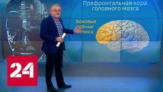 О трезвенниках и пьющих: алкоголь как средство вывести на чистую воду - Россия 24
