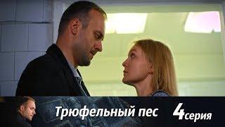 Трюфельный пес -  Серия 4/ 2017 / Сериал / HD 1080p