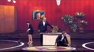 Юридические услуги - легализация марихуаны украденное счастье Киева, мер собака, юрист в шоке - юмор