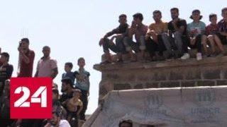 Над освобожденным от боевиков городом Тофас поднят флаг Сирии - Россия 24