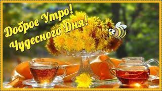 С ДОБРЫМ УТРОМ! ПЕСНЯ! Красивое Музыкальное Пожелание Доброго Утра и Чудесного Дня!