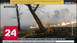 В Хабаровском крае пожар подобрался к месту обитания амурских тигров - Россия 24