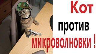 Приколы! КОТ ПРОТИВ МИКРОВОЛНОВКИ - МЕМЫ!!! Смешные видео от – Доми шоу!