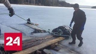 Крупную кожистую черепаху достали из-подо льда в канадском озере - Россия 24
