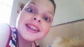 Реакция собаки на фиджет спиннер Вкусное мороженое Самые смешные животные приколы за день Funny Pets