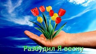 Разбудил я весну -  Песня для поднятия настроения - Песня про любовь - Красивое видео