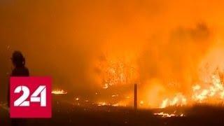 Пожар в Австралии: в Сиднее и пригородах ввели чрезвычайное положение - Россия 24