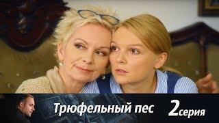 Трюфельный пес -  Серия 2/ 2017 / Сериал / HD 1080p