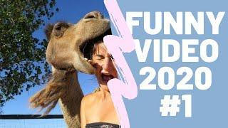 Смешные видео 2020, приколы над людьми, неудачные падения, ПОДБОРКА