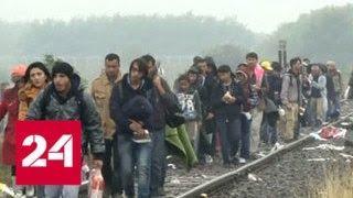 Европу разрывают противоречия по вопросу мигрантов - Россия 24
