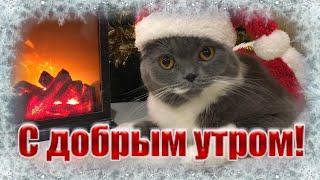 С Добрым Зимним Утром и Хорошим Днём! Красивое Музыкальное Пожелание Доброе Утро открытка!