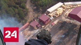 Лесные пожары не угрожают населенным пунктам Красноярского края - Россия 24