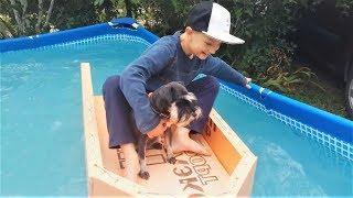 Приколы с Животными 2018 Новые Русские Приколы про Собак Подборка приколов с Cобаками #365