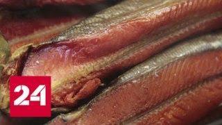 Небывалый улов на Камчатке: рыба мешает движению судов - Россия 24