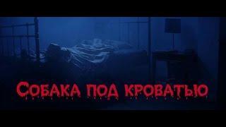 Страшные истории от Харона. Собака под кроватью. | Scary stories
