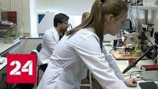Всемирный день науки: ученые сделали десятки открытий, которые серьезно изменят мир - Россия 24