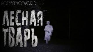 Страшные истории на ночь - Лесная тварь...