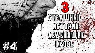 3 СТРАШНЫЕ ИСТОРИИ ЛЕДЕНЯЩИЕ КРОВЬ #4