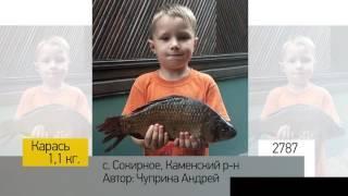 Фотоальбом - Рыбалка №557